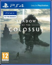PS4 - Shadow of Colossus  (PS719352778)